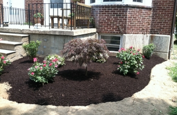 Edging Mulch Flowers
