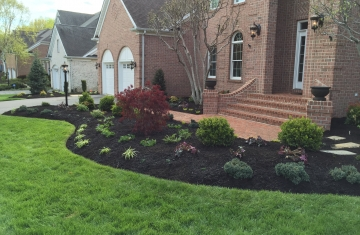 Edging-Mulch